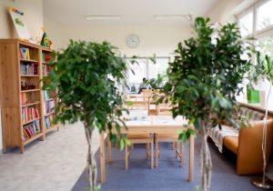 Szkoła Heliantus - Świetlica, Biblioteka, Czytelnia